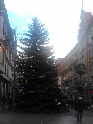 Piwnica-2013-12-27